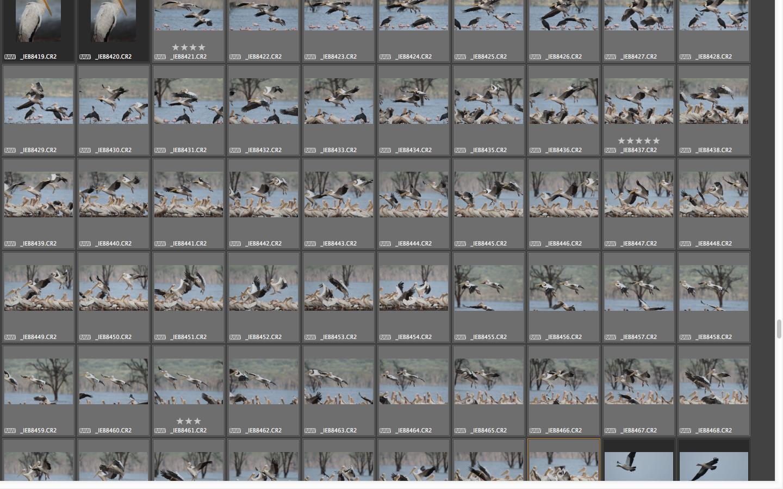 Captura de pantalla 2014-11-16 a la(s) 09.34.57